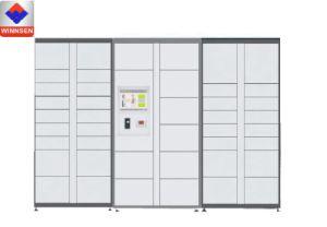 De geschikte Kast van de Levering van het Pakket van de Veiligheid van de Zelfbediening Automatische Slimme Intelligente Elektronische