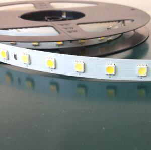 Alta qualità per SMD5050 la striscia registrabile dell'indicatore luminoso di colore LED