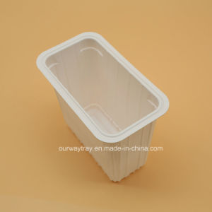 Contenedor de Comida de plástico de medio ambiente embalaje/envase de alimentos