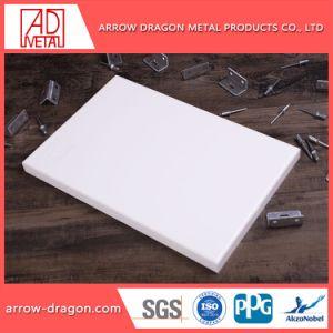 Het aangepaste Stevige Blad van het Aluminium van het Ontwerp voor de Commerciële Decoratie van de Bouw