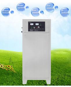 De Generator van het ozon voor de Sterilisatie en de Desinfectie van de Installatie van het Voedsel