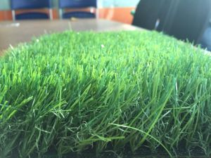 [أنتي-وف] منظر طبيعيّ زخرفة عشب اصطناعيّة اصطناعيّة لأنّ حديقة ومنزل