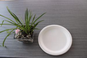 La bagasse de canne à sucre compostable biodégradable écologique  de la plaque de 9 pouces