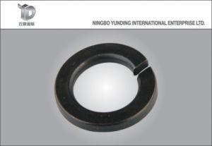 2016 Hot Sale de la Chine Fabricant rondelle ressort (YD-SW043)