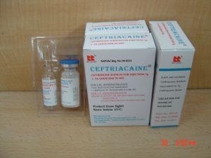 La ceftriaxone Poudre pour Solution Injectable BPF