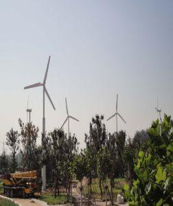 Hortizontal 축선 바람 터빈 (발전기) 20kw/120rpm