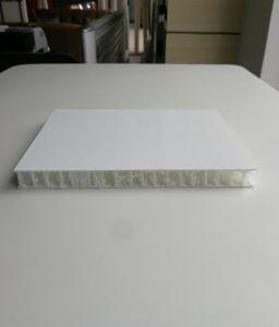 De ononderbroken Glasvezel versterkte het Thermoplastische Samengestelde Comité van de Sandwich voor Decoratie