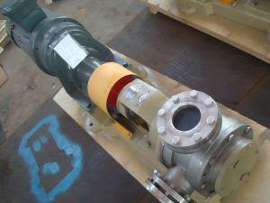 Pompa a ingranaggi di grande viscosità della vernice di Nyp