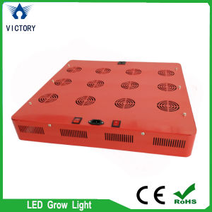 Alto potere Greenhouse 864W LED Grow Supplementary Lighting Lights