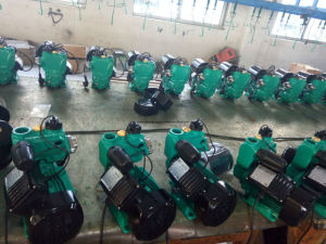 Pompa periferica autoadescante delle acque pulite della pompa del collegare di rame di Wzb