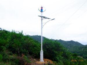 600W si dirigono il generatore di turbina di energia eolica di Maglev di uso (200W-5kw)