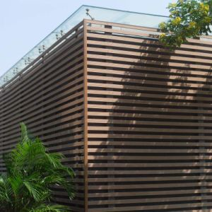 Le bois composite en plastique décoratifs Co-Extrusion Panneau mural