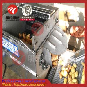 De de plantaardige Automatische Wortel van de Was/Machine van de Schil van de Aardappel
