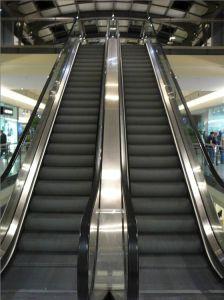 Для использования внутри помещений Vvvvf эскалатора цены с хорошим качеством