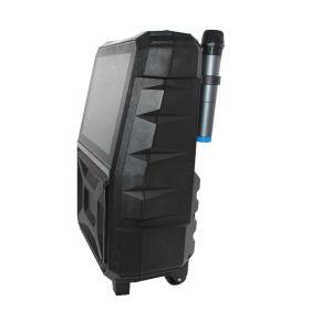 15 Zoll LCD-Batterie-Lautsprecher für heißen Verkauf