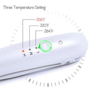 工場電池式の平らな鉄(V180)