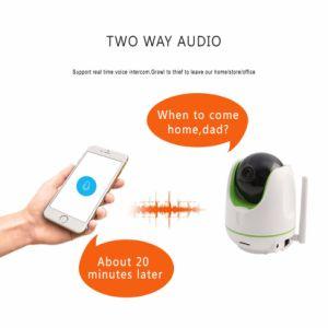 Cámara WiFi 1080P de la cámara de seguridad con detección de movimiento/noche Versión
