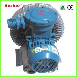 ATEX 모터 와동 공기 펌프