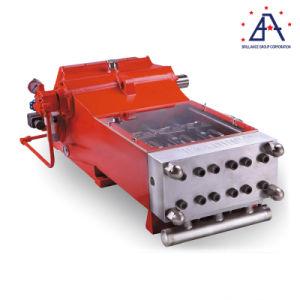 Торговли гарантии высокого качества 36000фунтов промышленные поршневые насосы (FJ0176)