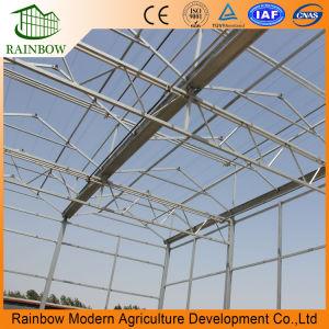 농업 사용을%s Venlo 유리제 온실