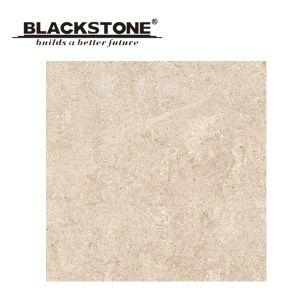 Tegel van de Vloer van het Porselein van Inkjet de Druk Verglaasde voor Badkamers 600X600 (42693)