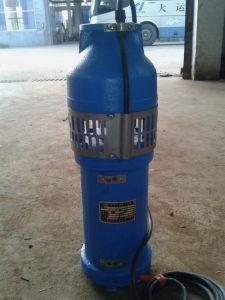 샘 잠수할 수 있는 펌프 (QS65-7-2.2)