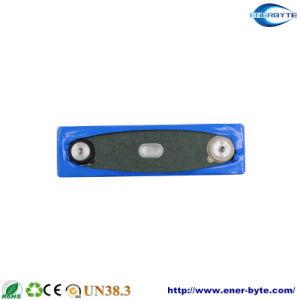 LiFePO4 Batería prismáticos 3,2 V 120Ah para coche eléctrico/ E-Bus