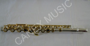 Flauta / flauta de níquel-prata / flauta profissional 17 furos (FL17KEG-S)