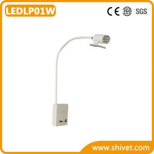 獣医の検査ランプ(LEDLP01W)
