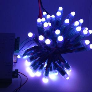 Bunte 5050 12V LED Beleuchtung Weihnachtsfeiertags-im Freien wasserdichtes Pixel RGB-