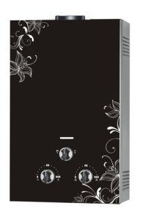 Panel de acero inoxidable calentador de agua de gas (JSD-C120)