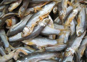 産業商業魚食糧フルーツ野菜の乾燥のドライヤーの脱水機機械