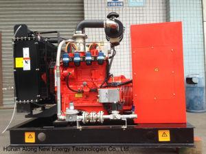 노르웨이에 있는 25kw 침묵하는 유형 Biogas Generator/CHP
