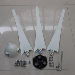 DIYの刃、工場は水平の発電機の刃100Wに600Wを出荷した