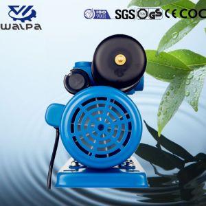 福建省Mindong Xinyuanの国内電気自動プライミング増圧ポンプ