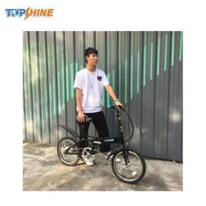 極度のわずかな慣性の巡航システム18インチのスマートな電気バイク