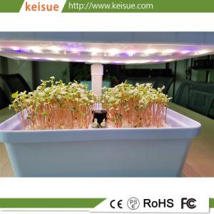 Van Micro- van Keisue Hydroponic 4.0 KES van het Landbouwbedrijf voor Microgreens