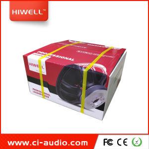 Système audio PA enceinte de line array 10'' Woofer en néodyme Powered stade haut-parleur.