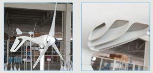 Kleiner 100W 12V 24V Wechselstrom-Wind-Turbine-Wind-Generator