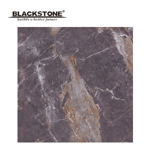 Hot Sale Marble Tile with Silk Screen Printing 600X600mm (SS16124)
