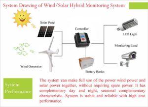 Mini générateur solaire hybride d'énergie éolienne 300W avec la conformité de la CE