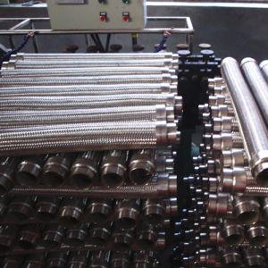 Tubo flessibile Braided flessibile dell'acciaio inossidabile
