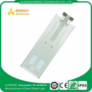 30W PIRの機密保護の壁ランプ屋外LEDの太陽街灯