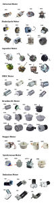 5-200W 3000tr/min AC Phase unique pôle ombragée du moteur pour Electromagnetic-Brake