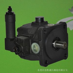Pompe à palettes, Vp-Df Variable Variable Double pompe à palettes (VP-SF; VPM-SF; VP-DF)
