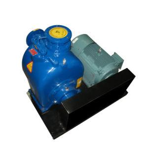 Enden-Absaugung-Selbst, der zentrifugale Sewgae Pumpe mit elektrischem grundiert
