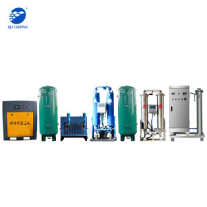 sterilizzazione dell'acqua del generatore dell'ozono 100g per acqua potabile