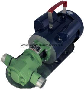 힘 -50 소형 기어 기름 펌프 13 1개의 Bio-Diesel 모터 연료 이동