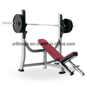 Instructor de gimnasio integrado/ Banco de inclinación de la olímpica