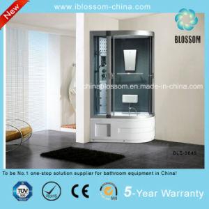 Cristal gris multifunción/Sauna de Vapor Masaje de cabina de ducha (BLS-9845)